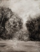 <p><em>Cottonwoods: Carson River</em>, 26&#8243; x 20&#8243;, ink on yupo paper</p>
