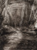 <p><em>What the River Says: the Mokulumne</em>, 12″ x 9″, ink on yupo paper</p>